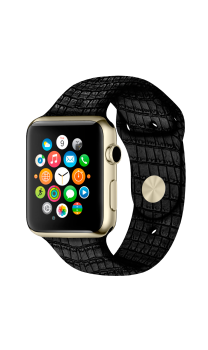 Apple Watch Platinum
